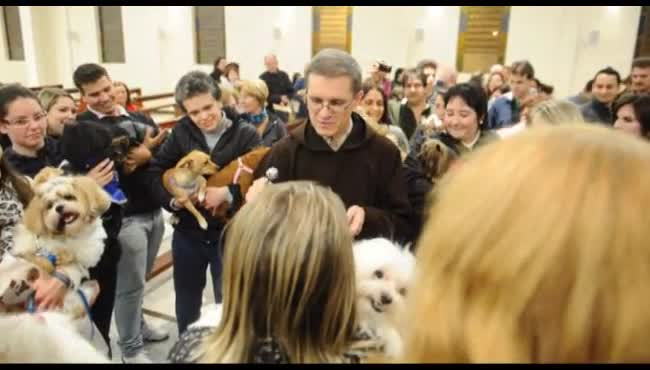 Frei Jaime Bettega abençoa os animais na igreja do Kayser