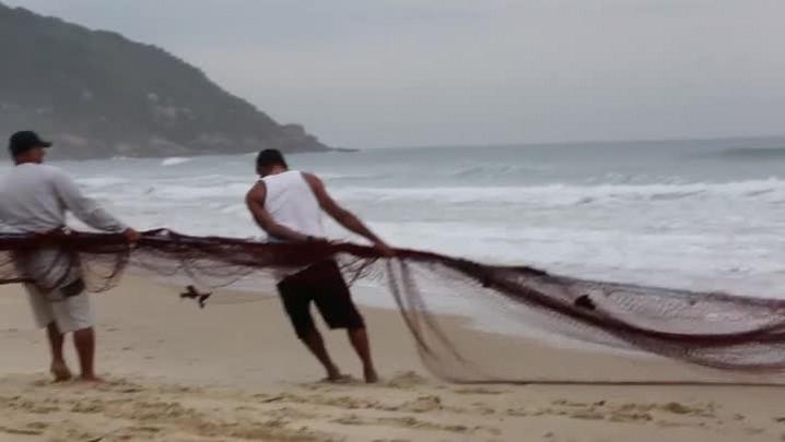 Lanço de tainha nesta quinta-feira em Florianópolis