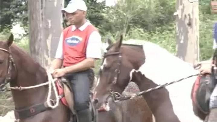 TVCOM Tudo+ - Cavalo - 07.14.14