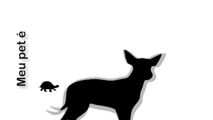 Meu Pet é Pop Gisele a mascote da UFSM