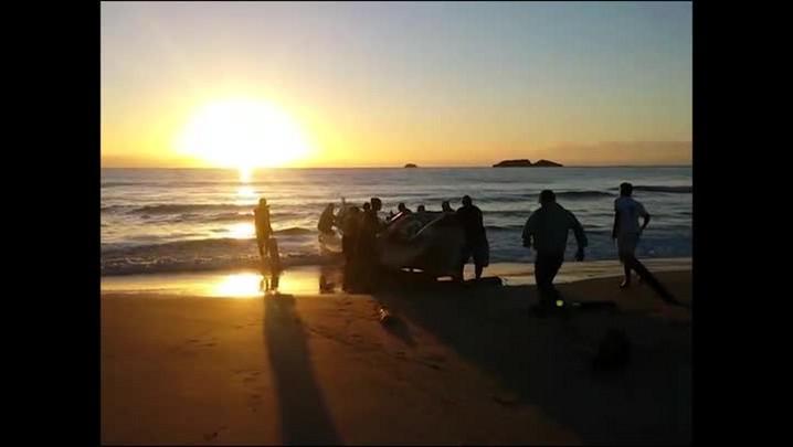 O início da temporada da pesca artesanal da tainha na praia dos Ingleses, em Florianópolis