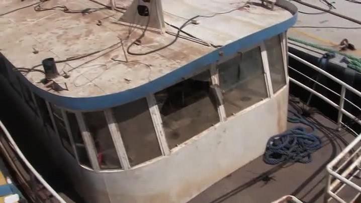 Equipes trabalham no resgate do Cisne Branco