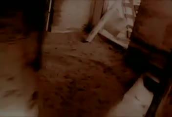 Alice in Chains se apresenta nesta terça-feira na Capital