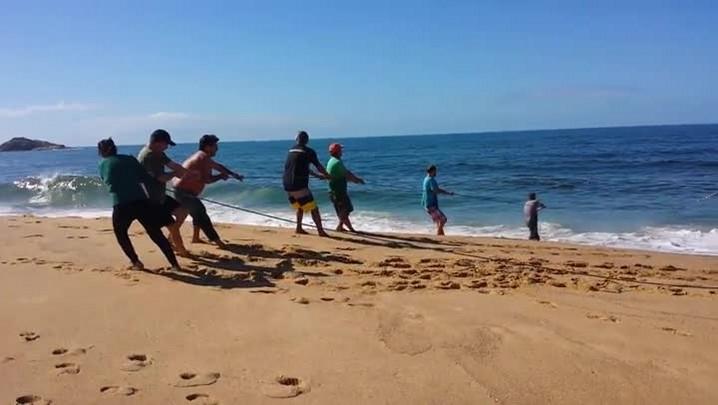 Pescadores capturam tainhas na Praia do Estaleiro em Balneário Camboriú