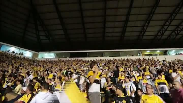 Tigre na final - Bastidores de Criciúma 1 x 0 Avaí