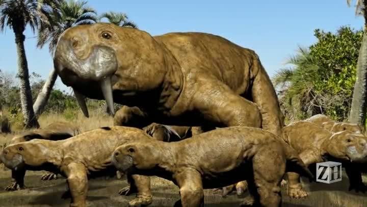 Cientistas iniciam remoção de animal pré-histórico em Candelária