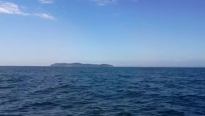 Baleia salta em frente à Ilha da Galé, nas proximidades da Reserva do Arvoredo, em Bombinhas