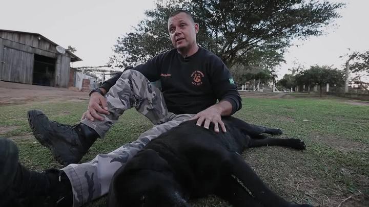 Primeiro cão de busca dos Bombeiros se aposenta