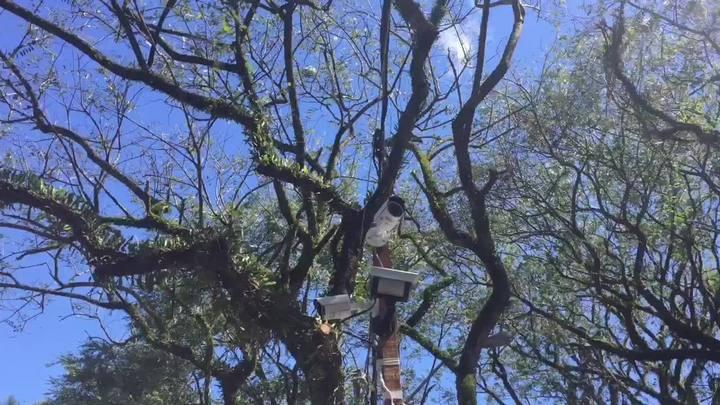 Piquete transmite imagens ao vivo do Acampamento Farroupilha