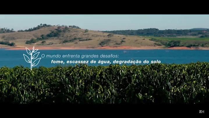 Programa auxilia o produtor a aprimorar práticas conforme as exigências internacionais do mercado do café