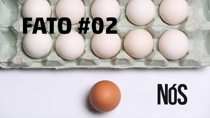 Fato #02: há preconceito contra quem vem de fora?