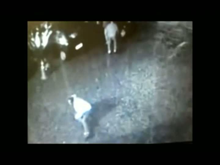 Polícia procura acusado de golpear homem com martelo em Joinville