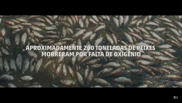 Morte no Rio dos Sinos