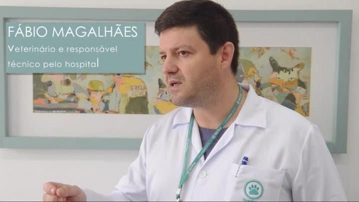 Descubra os recursos oferecidos em Hospital Veterinário de Joinville