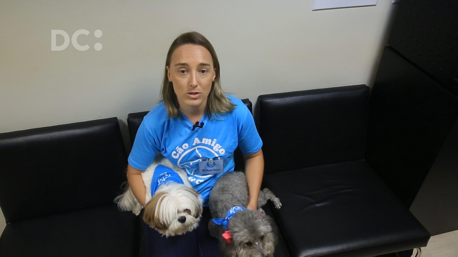 E eu com isso: projeto pretende autorizar cães a visitar os donos em hospitais