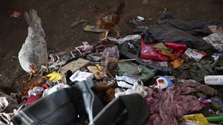 A situação dos ex-moradores da Ilha do Pavão