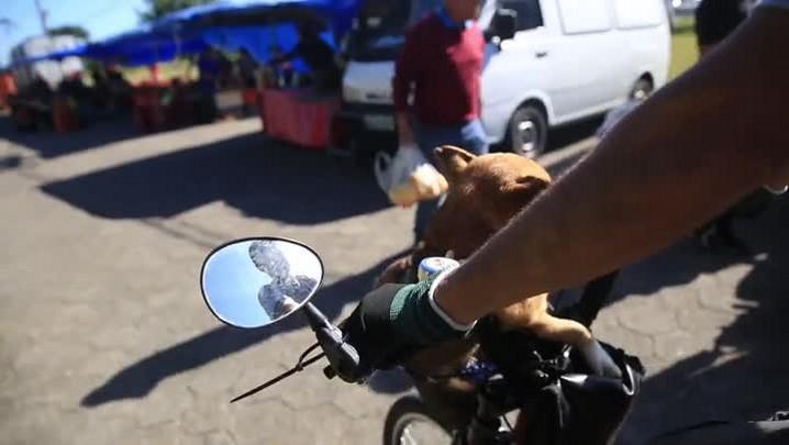 Ex-professor de história idealiza o Ciclo Táxi, no bairro Carianos