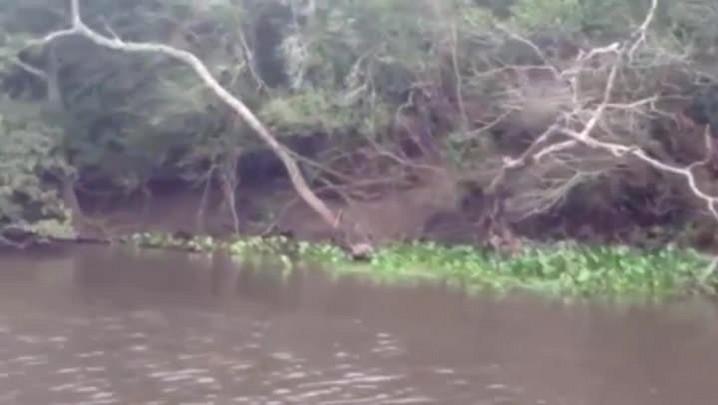 A falta de tratamento de esgoto nas cidades com rios mais poluídos do RS