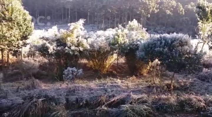 Frio intenso congela cascata em Urupema, na Serra Catarinense