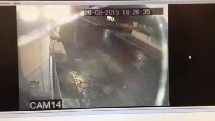 Delegada comenta imagens sobre atropelamento de pedestre em Alvorada