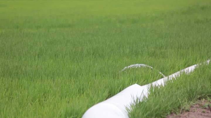 Tecnologias impulsionam produção agrícola