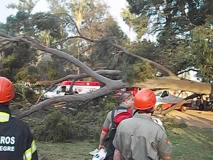 Queda de árvore na Redenção mata uma pessoa e fere outras duas
