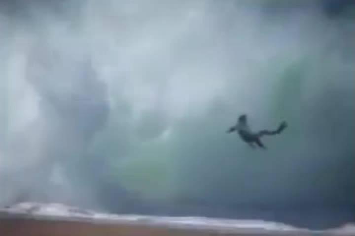 Onda grande faz bodyboarder correr risco na Praia Norte em Portugal