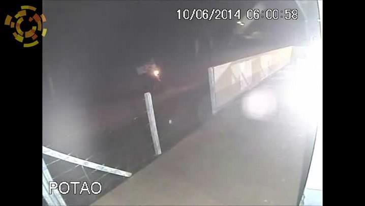 Câmera de monitoramento flagra abandono de cãozinho em Canil