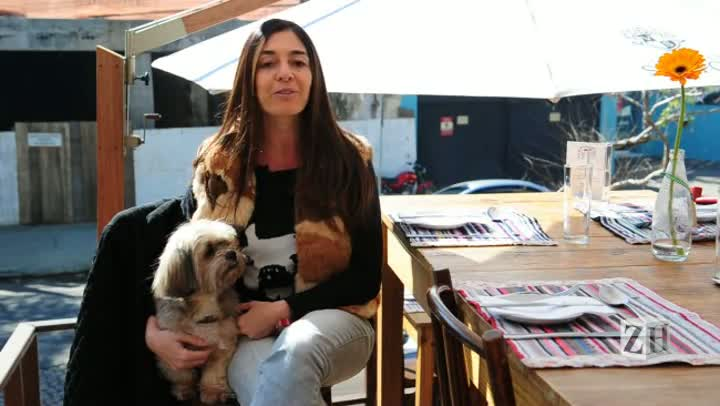 Repórteres da Revista Donna testam lugares pet friendly de Porto Alegre