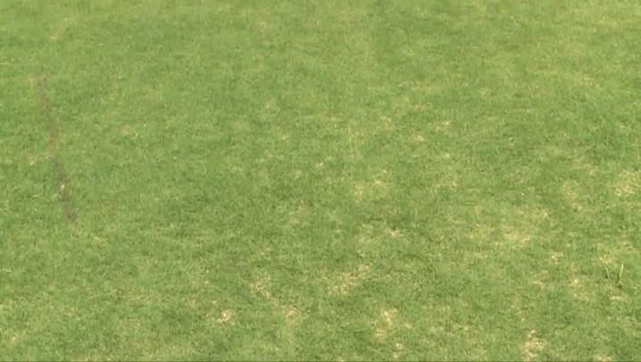 Saiba da onde vem a grama dos estádios da Copa do Mundo