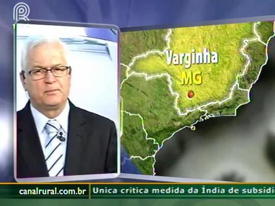 Chuva de granizo prejudica planta��es de caf� em Varginha