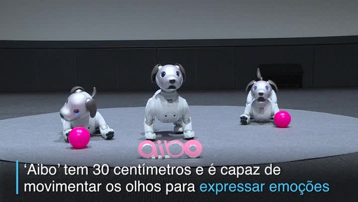 Sony apresenta nova versão de seu cão robô