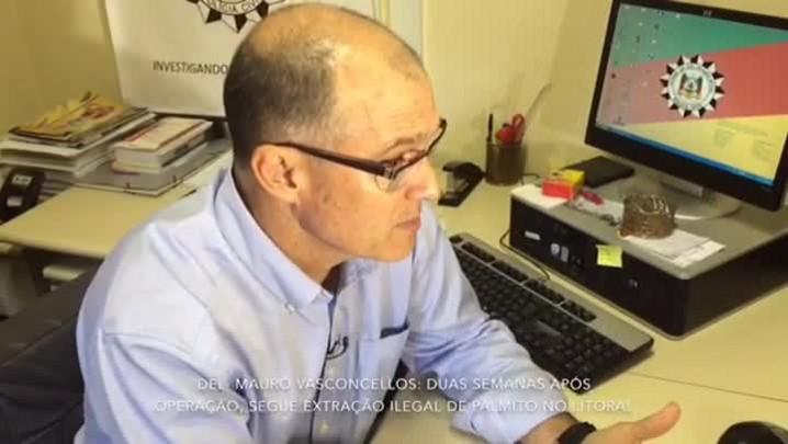Polícia faz nova operação para combater esquema ilegal de produção de palmito no RS