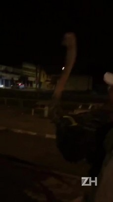 BM recolhe avestruz perdido em rua de Sapucaia do Sul