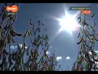 TVCOM 20 Horas - Previsão otimista de nova supersafra de grãos no RS - Bloco 1 - 01/09/2014