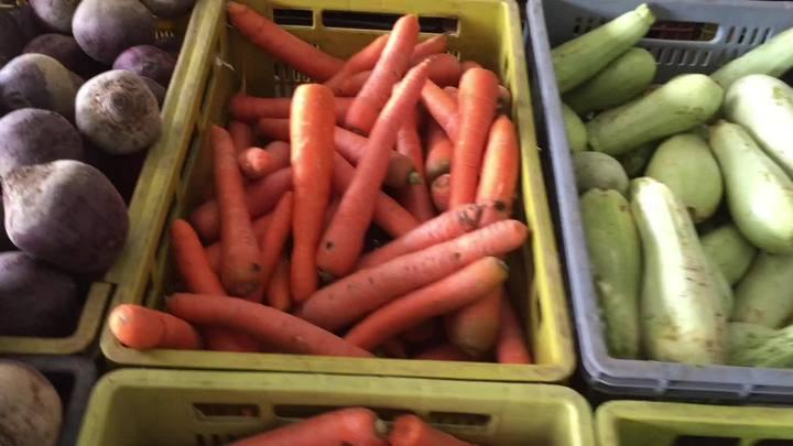 Conheça o projeto da Ceasa que doa alimentos não comercializados