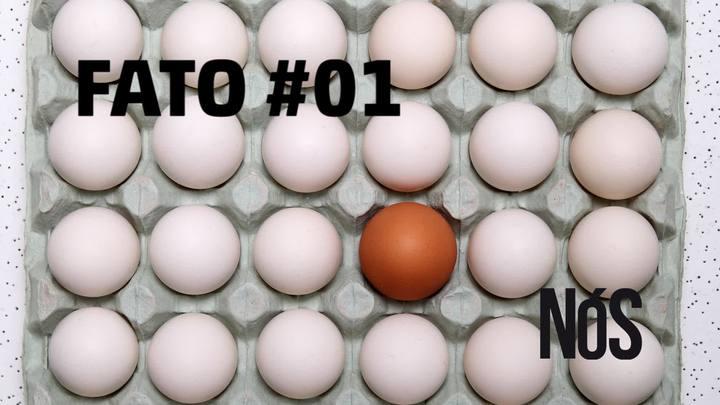 Fato #01: há preconceito contra quem vem de fora?