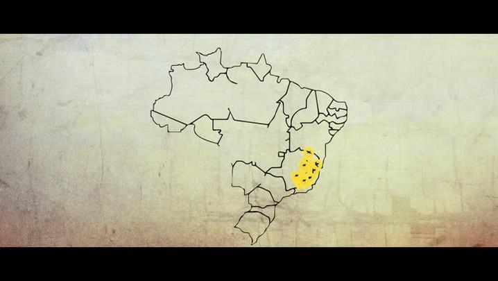 GaúchaZH Explica: Por que os macacos não são os vilões da febre amarela