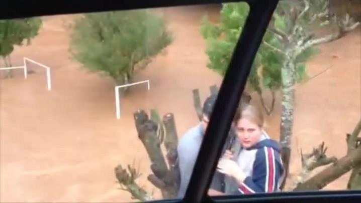 Conheça a história da família que subiu em árvore para se salvar das chuvas no Oeste