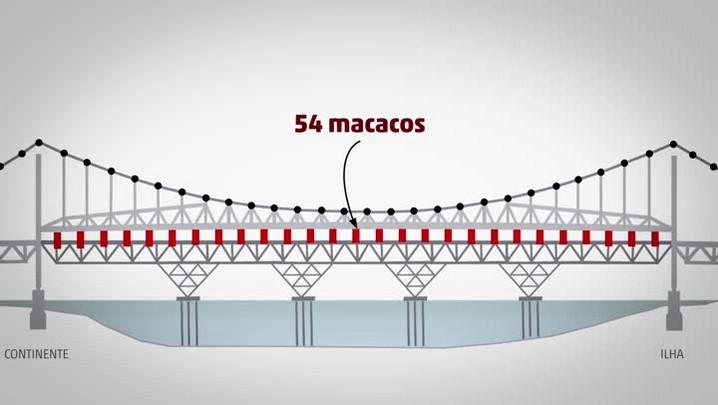 Entenda como serão os próximos passos da reforma da Ponte Hercílio Luz