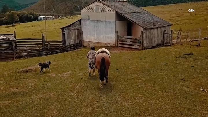 """""""Dói olhar para a lavoura"""", diz produtor rural sobre estiagem em Piratini"""