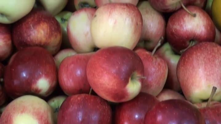 Como escolher frutas, legumes e verduras