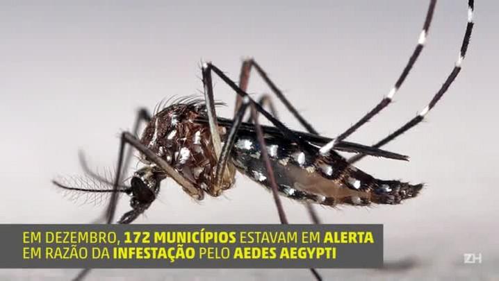 Saiba o que fazer ao apresentar sintomas de dengue