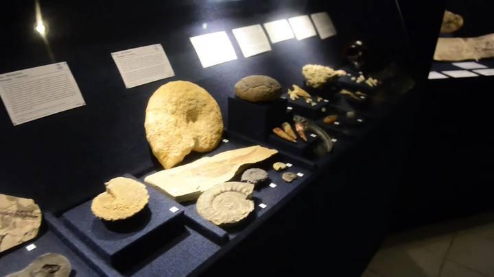SC inaugura maior Museu Oceanográfico da América Latina
