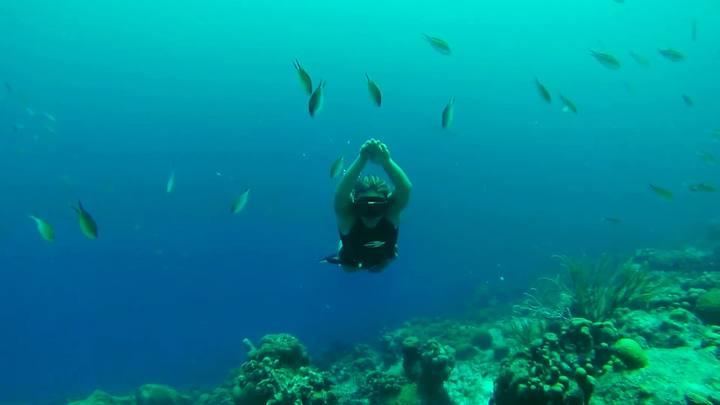 Aventura SC #4: Acompanhe um mergulho em apneia com Karol Meyer