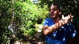 Moradores do Rio Tavares querem impedir ocupação de área de dunas