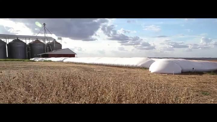 Muitos grãos para pouco espaço