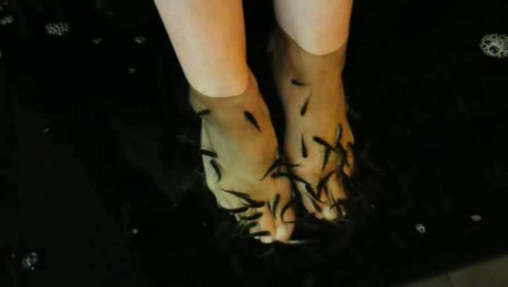 Como funciona o tratamento de beleza com peixes-pedicure