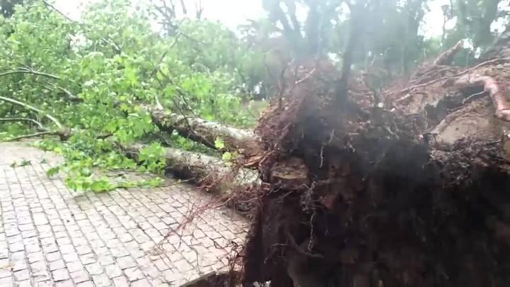 Carro dentro d\'água e árvores caídas: os estragos do temporal em Porto Alegre