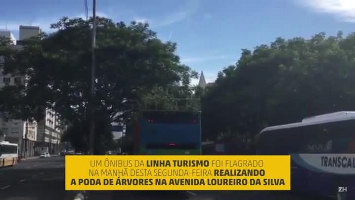 Ônibus da linha Turismo é utilizado para podar árvores em Porto Alegre
